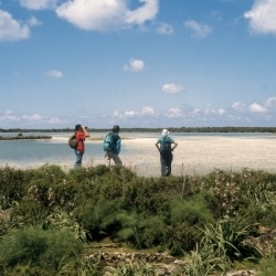 Ornithologische Wanderungen auf Sardinien